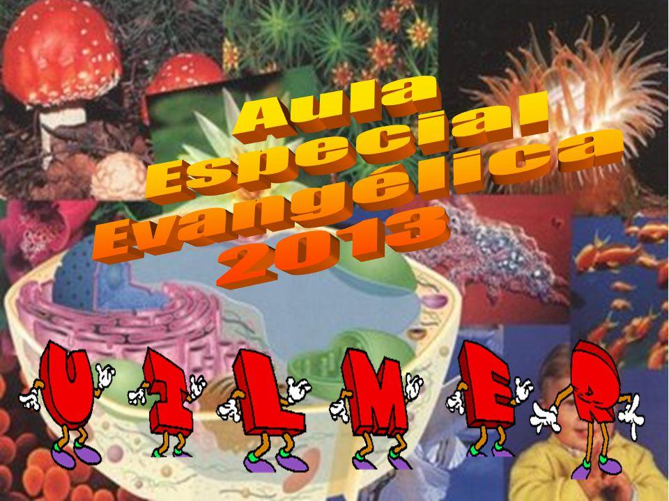 Aula Especial Evangélica 2013