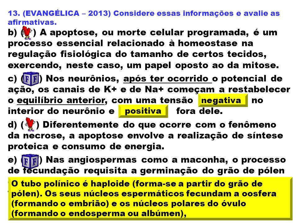 13. (EVANGÉLICA – 2013) Considere essas informações e avalie as afirmativas.