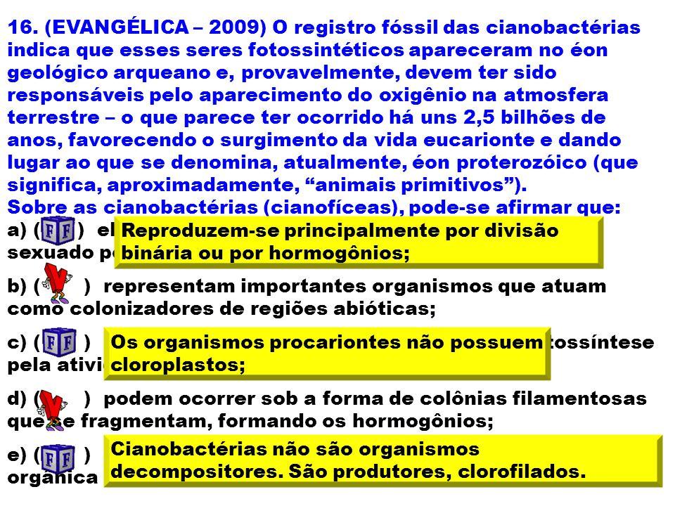 16. (EVANGÉLICA – 2009) O registro fóssil das cianobactérias indica que esses seres fotossintéticos apareceram no éon geológico arqueano e, provavelmente, devem ter sido responsáveis pelo aparecimento do oxigênio na atmosfera terrestre – o que parece ter ocorrido há uns 2,5 bilhões de anos, favorecendo o surgimento da vida eucarionte e dando lugar ao que se denomina, atualmente, éon proterozóico (que significa, aproximadamente, animais primitivos ).