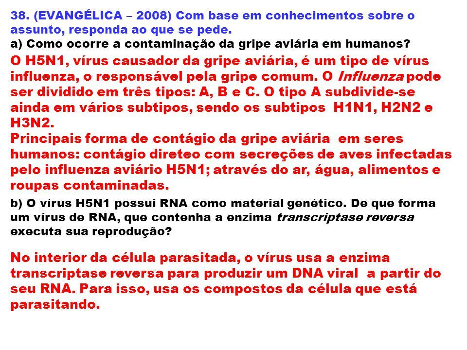 38. (EVANGÉLICA – 2008) Com base em conhecimentos sobre o assunto, responda ao que se pede.