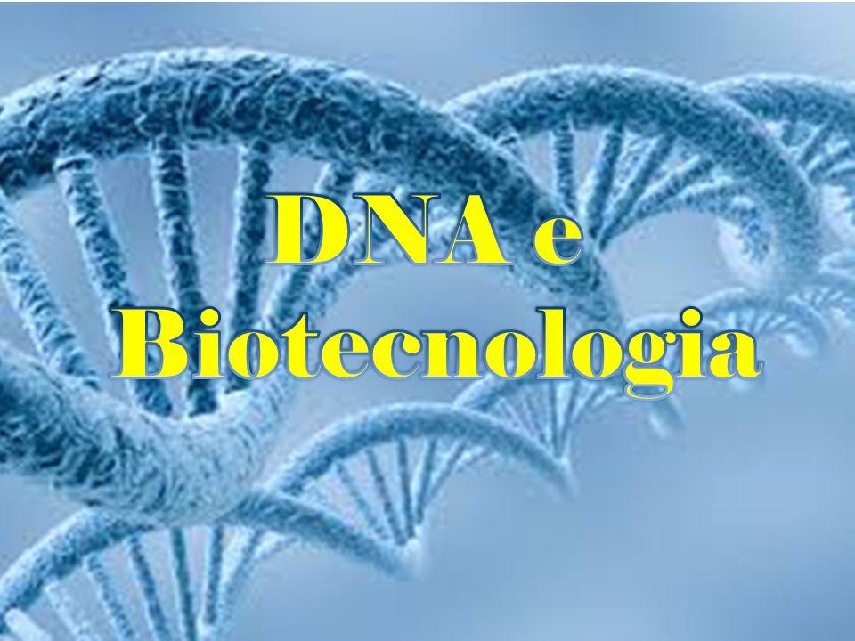 DNA e Biotecnologia