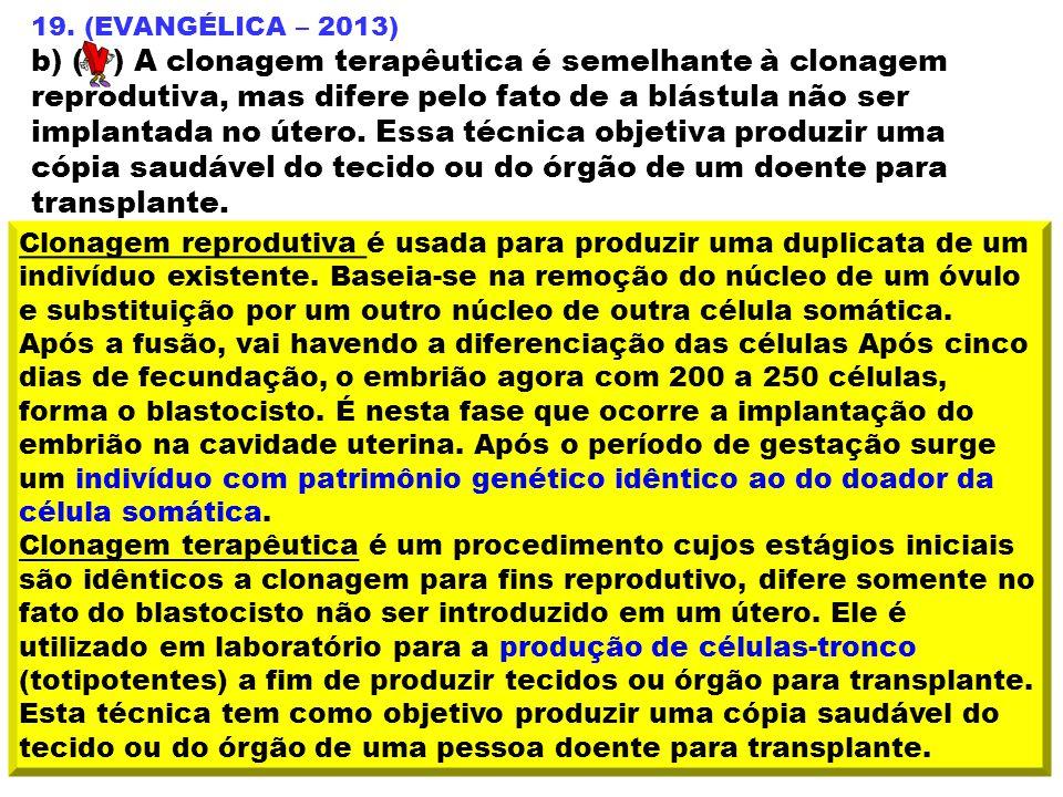 19. (EVANGÉLICA – 2013)