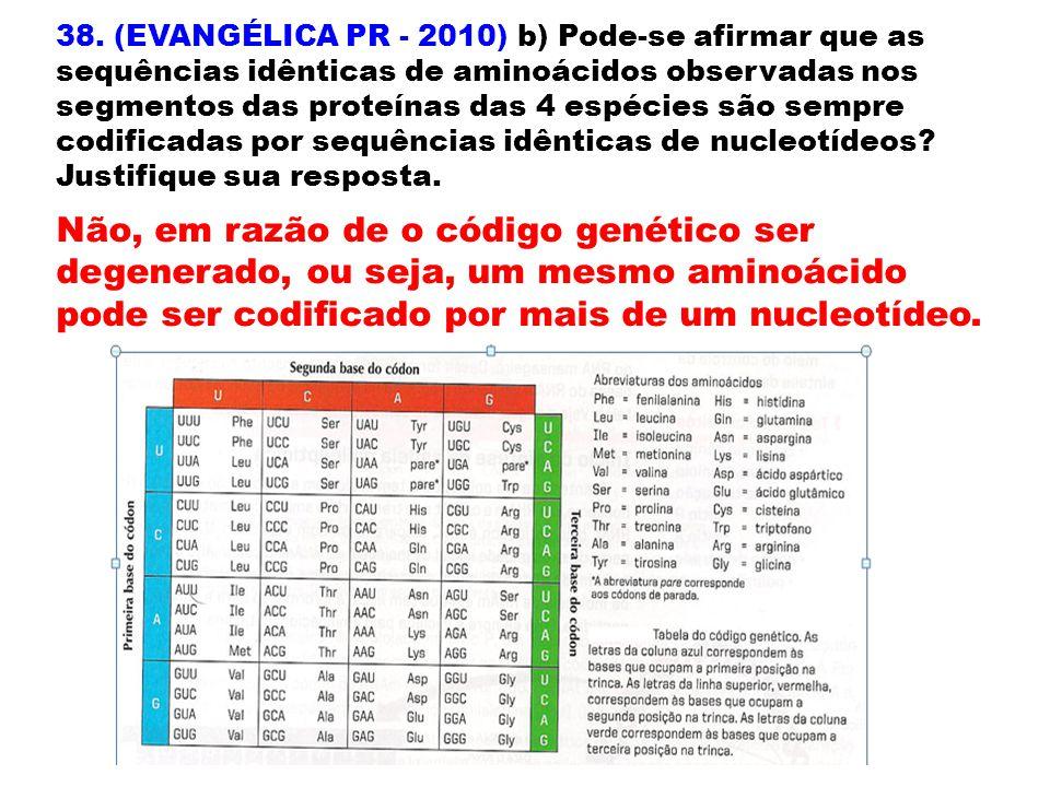 38. (EVANGÉLICA PR - 2010) b) Pode-se afirmar que as sequências idênticas de aminoácidos observadas nos segmentos das proteínas das 4 espécies são sempre codificadas por sequências idênticas de nucleotídeos Justifique sua resposta.
