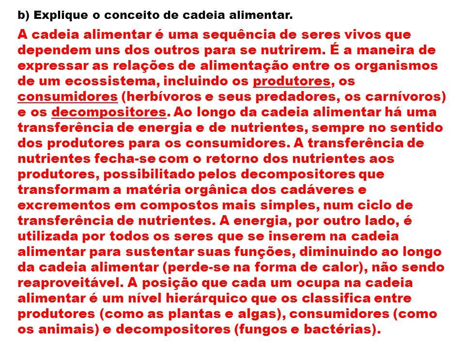 b) Explique o conceito de cadeia alimentar.