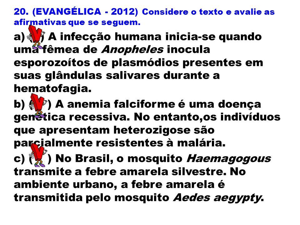 20. (EVANGÉLICA - 2012) Considere o texto e avalie as afirmativas que se seguem.