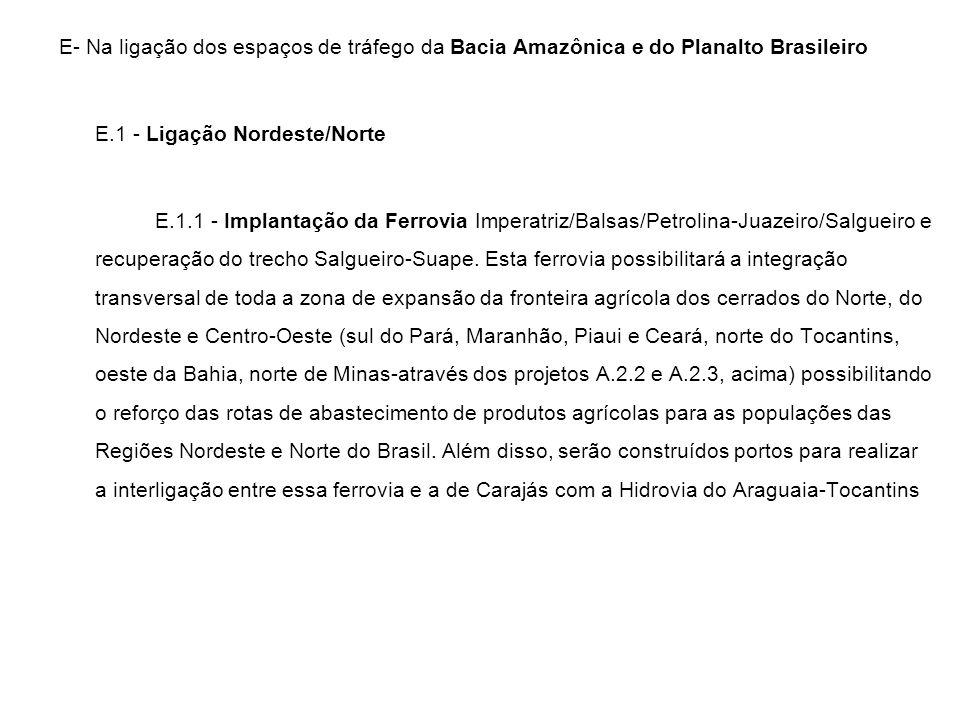 E- Na ligação dos espaços de tráfego da Bacia Amazônica e do Planalto Brasileiro