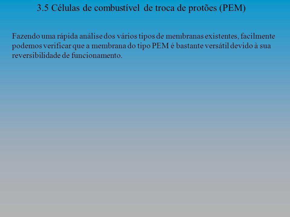 3.5 Células de combustível de troca de protões (PEM)