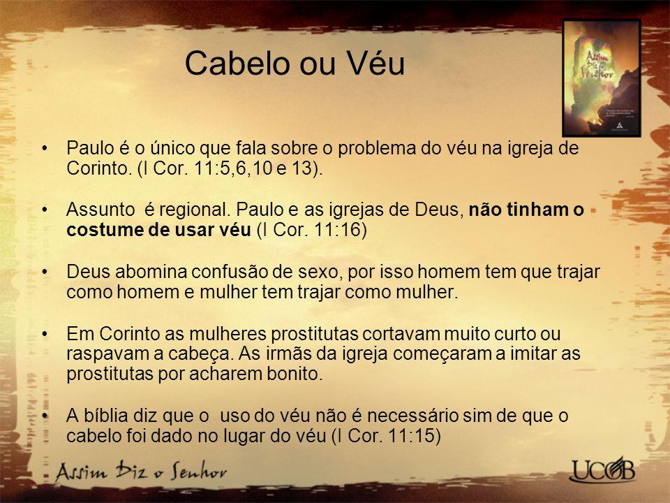 Cabelo ou Véu Paulo é o único que fala sobre o problema do véu na igreja de Corinto. (I Cor. 11:5,6,10 e 13).