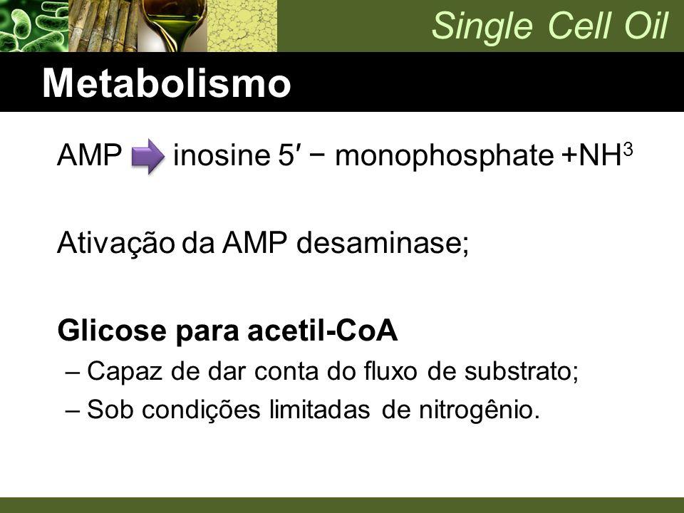 Metabolismo AMP inosine 5′ − monophosphate +NH3