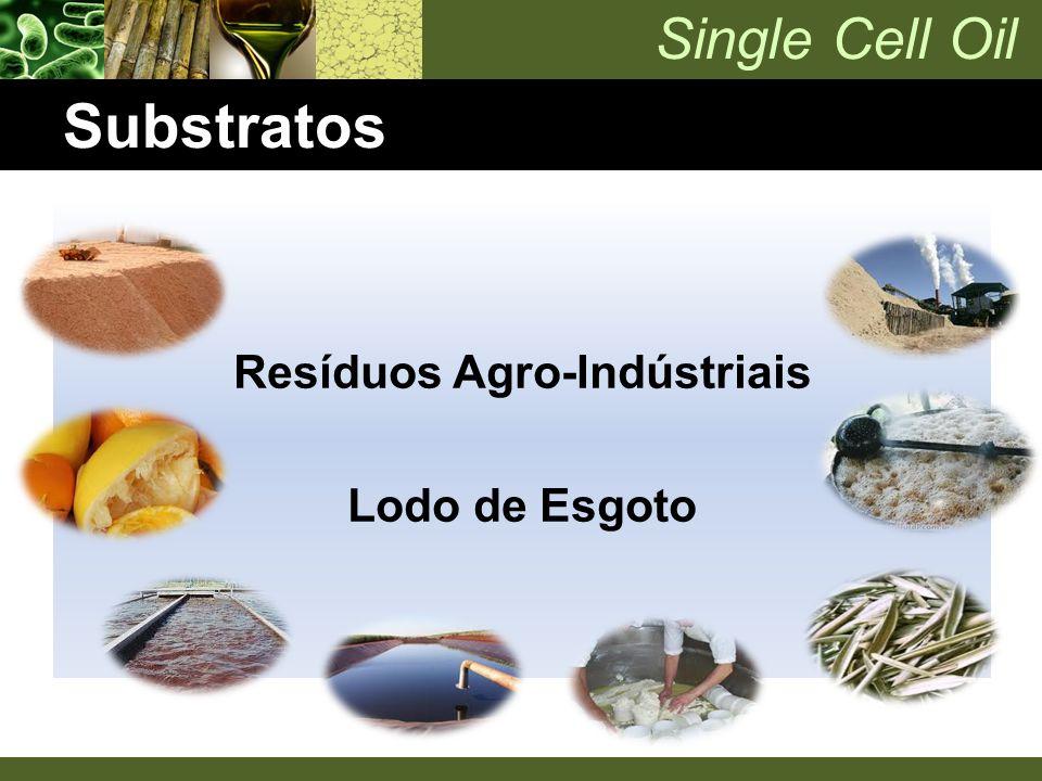 Resíduos Agro-Indústriais