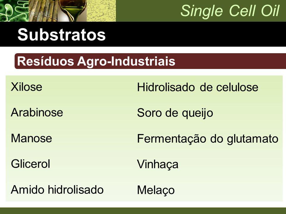 Substratos Resíduos Agro-Industriais Xilose Hidrolisado de celulose