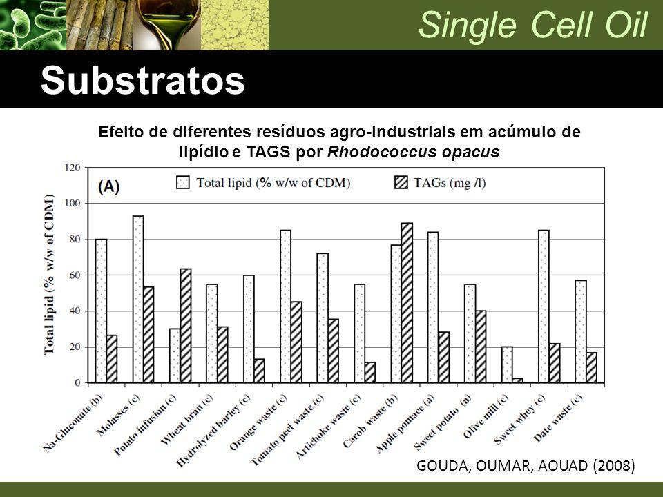 Substratos Efeito de diferentes resíduos agro-industriais em acúmulo de lipídio e TAGS por Rhodococcus opacus.