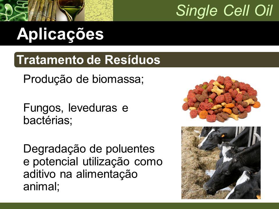 Aplicações Tratamento de Resíduos Produção de biomassa;