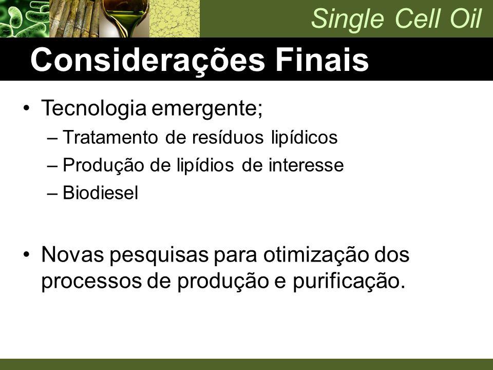 Considerações Finais Tecnologia emergente;