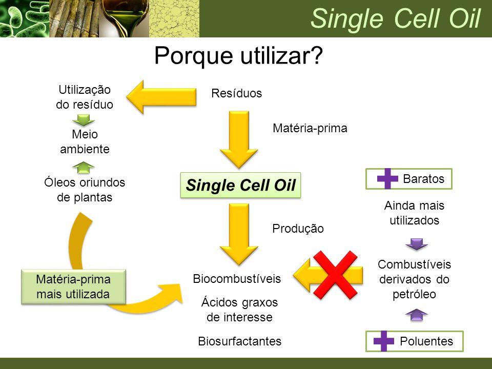 Single Cell Oil Porque utilizar Single Cell Oil Utilização do resíduo