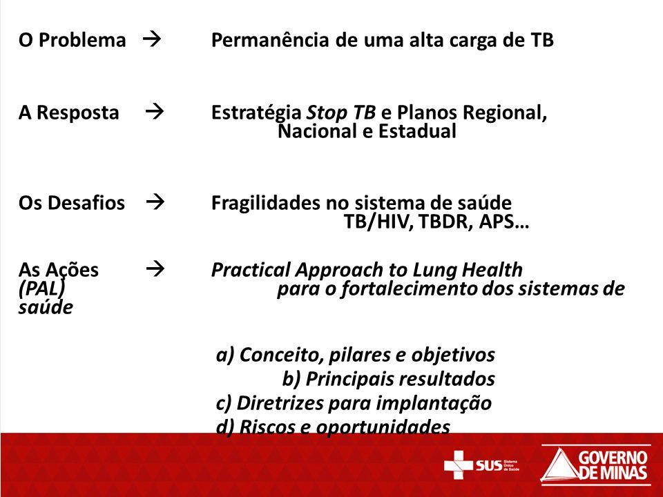 O Problema  Permanência de uma alta carga de TB