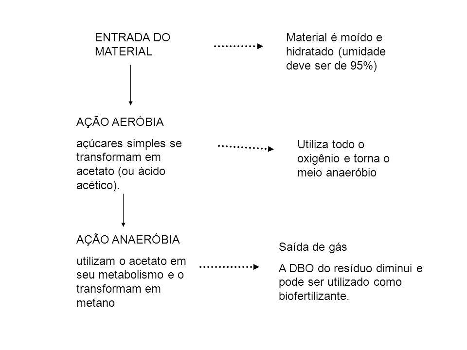 ENTRADA DO MATERIAL Material é moído e hidratado (umidade deve ser de 95%) AÇÃO AERÓBIA.