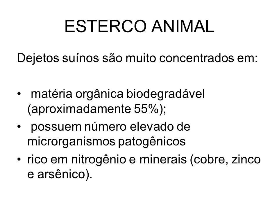 ESTERCO ANIMAL Dejetos suínos são muito concentrados em: