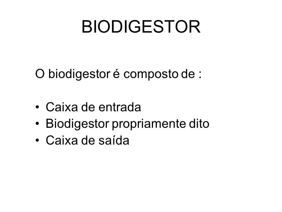 BIODIGESTOR O biodigestor é composto de : Caixa de entrada