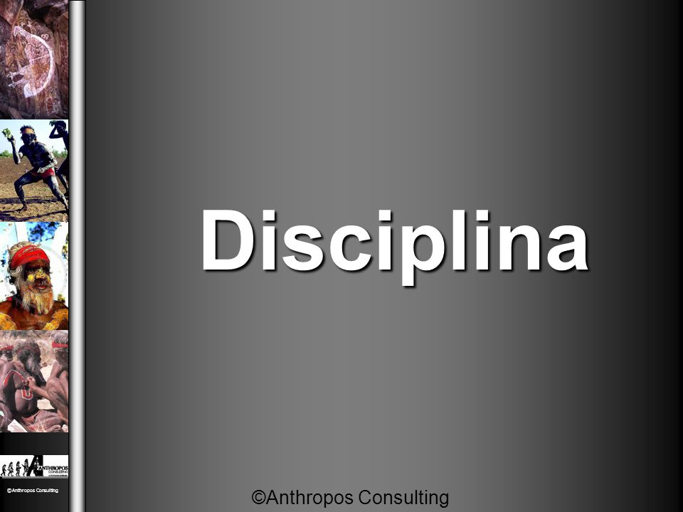 Disciplina ©Anthropos Consulting