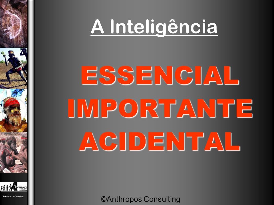 A Inteligência ESSENCIAL IMPORTANTE ACIDENTAL ©Anthropos Consulting