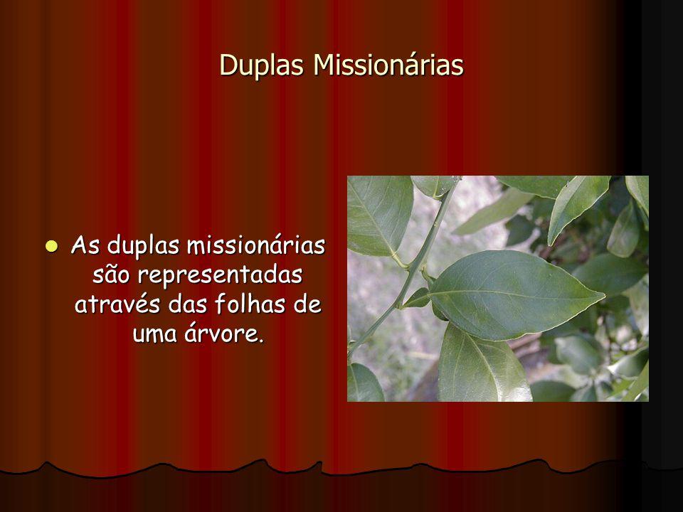 Duplas Missionárias As duplas missionárias são representadas através das folhas de uma árvore.