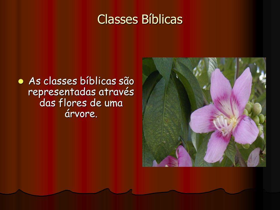 Classes Bíblicas As classes bíblicas são representadas através das flores de uma árvore.