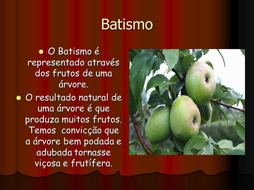 O Batismo é representado através dos frutos de uma árvore.