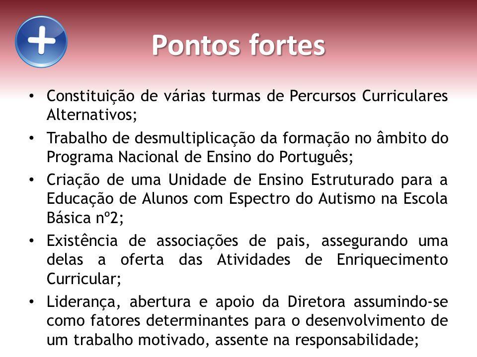 Pontos fortes Constituição de várias turmas de Percursos Curriculares Alternativos;