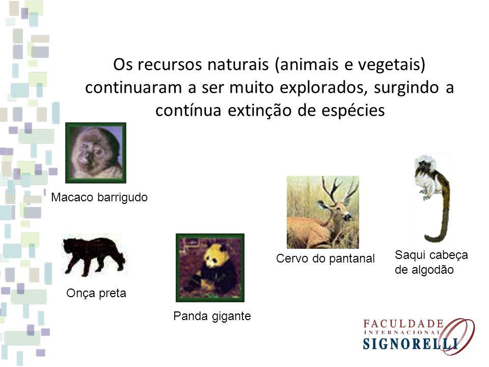 Os recursos naturais (animais e vegetais) continuaram a ser muito explorados, surgindo a contínua extinção de espécies