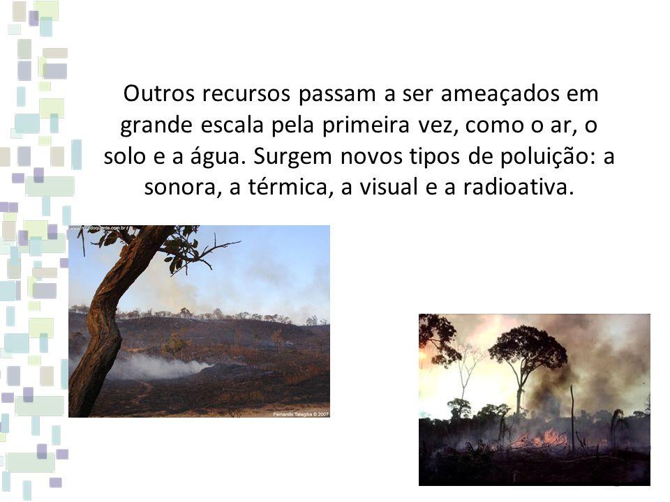 Outros recursos passam a ser ameaçados em grande escala pela primeira vez, como o ar, o solo e a água.