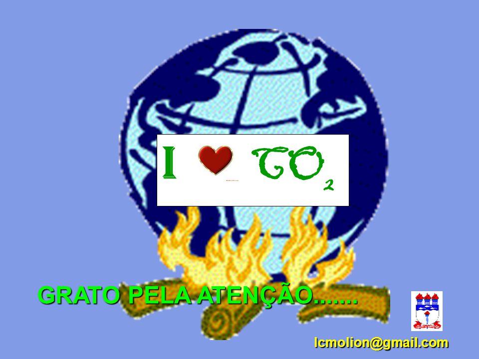 I CO2 GRATO PELA ATENÇÃO....... lcmolion@gmail.com 53