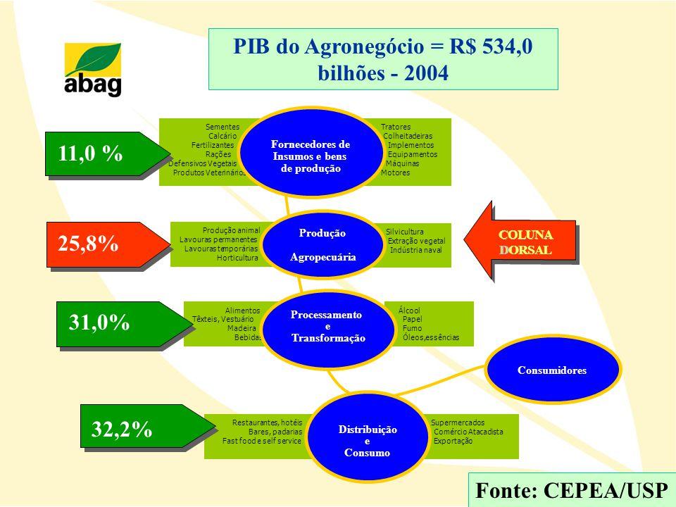 PIB do Agronegócio = R$ 534,0 bilhões - 2004