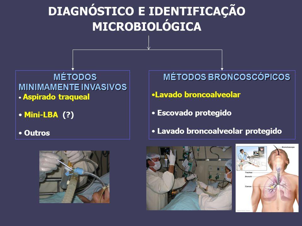 DIAGNÓSTICO E IDENTIFICAÇÃO MICROBIOLÓGICA