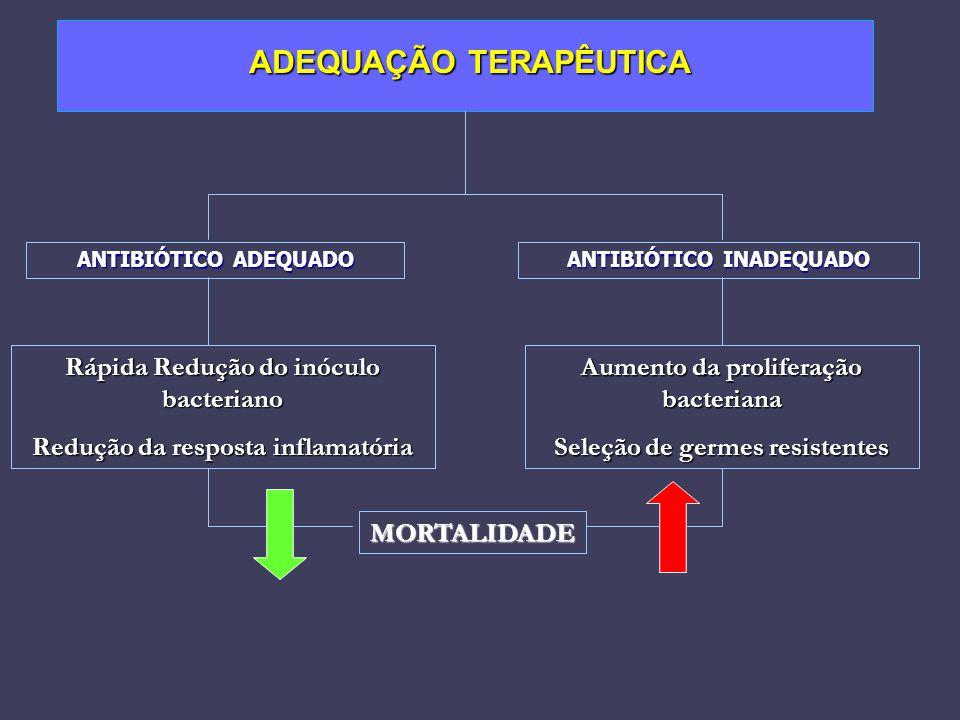 ADEQUAÇÃO TERAPÊUTICA