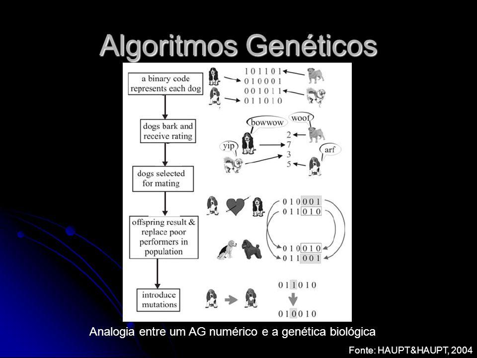 Algoritmos Genéticos Analogia entre um AG numérico e a genética biológica Fonte: HAUPT&HAUPT, 2004
