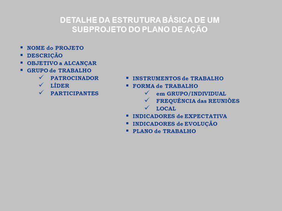 DETALHE DA ESTRUTURA BÁSICA DE UM SUBPROJETO DO PLANO DE AÇÃO