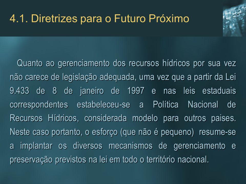 4.1. Diretrizes para o Futuro Próximo