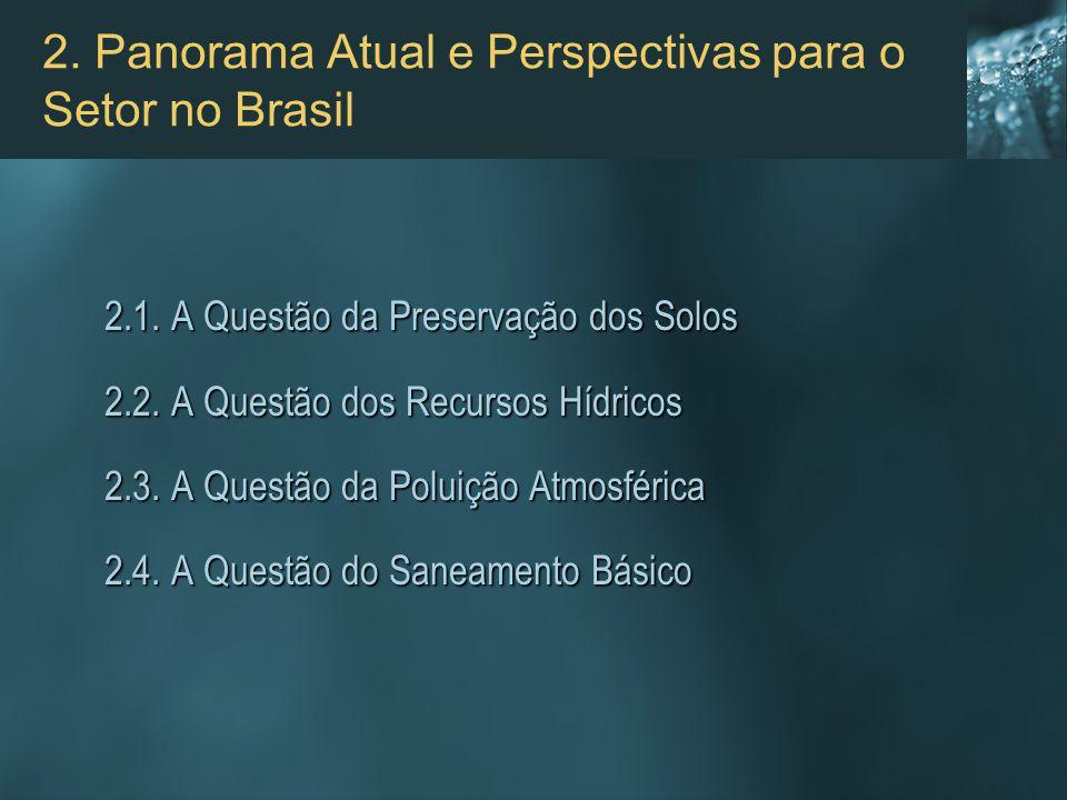 2. Panorama Atual e Perspectivas para o Setor no Brasil