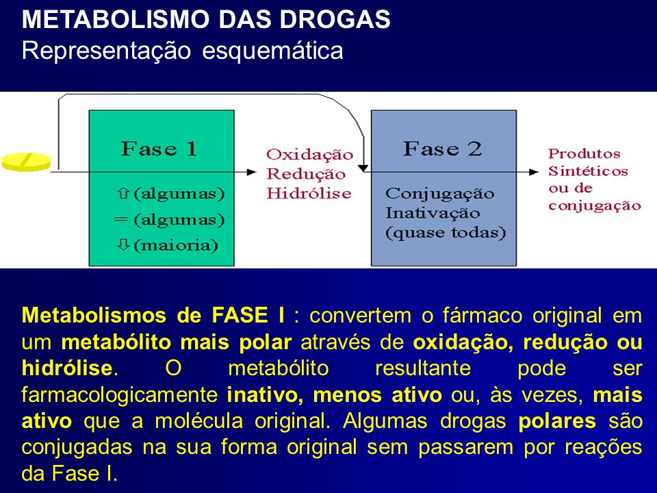 METABOLISMO DAS DROGAS Representação esquemática