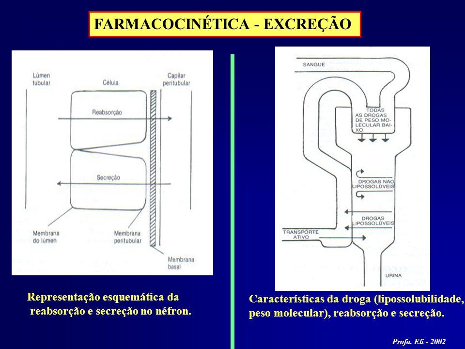 FARMACOCINÉTICA - EXCREÇÃO