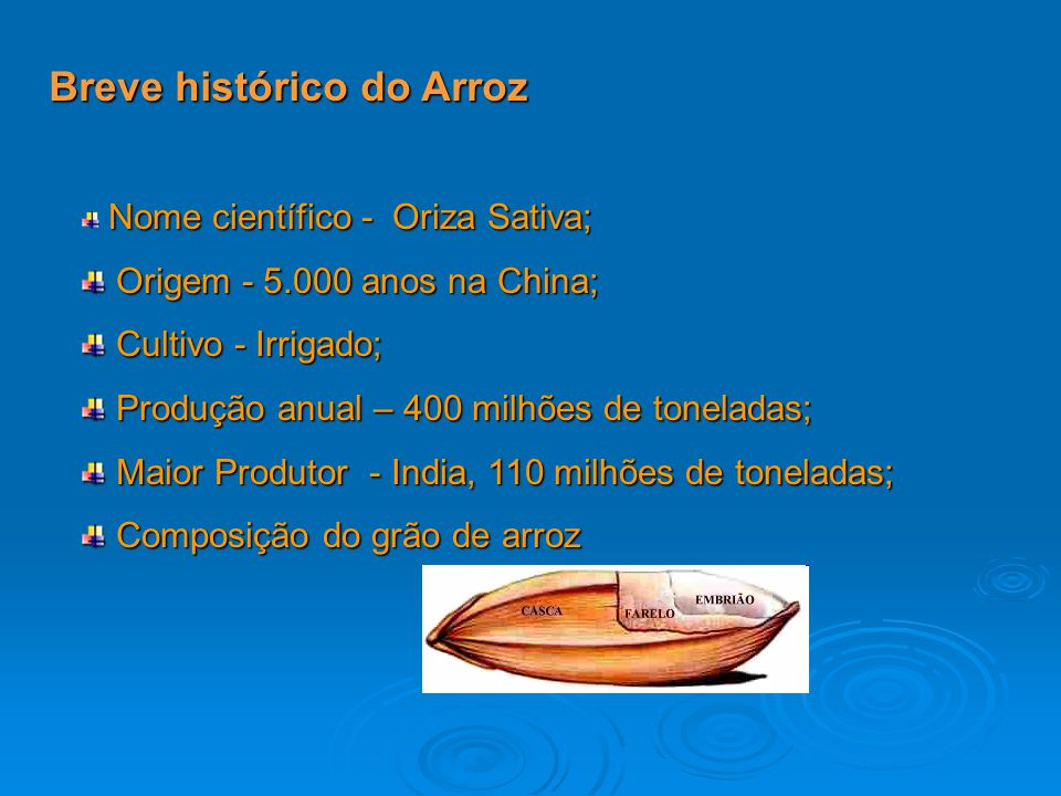 Breve histórico do Arroz