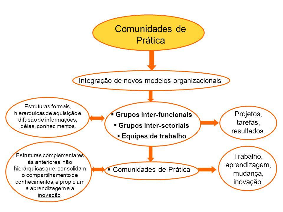 Grupos inter-funcionais Grupos inter-setoriais