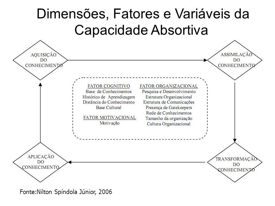 Dimensões, Fatores e Variáveis da Capacidade Absortiva