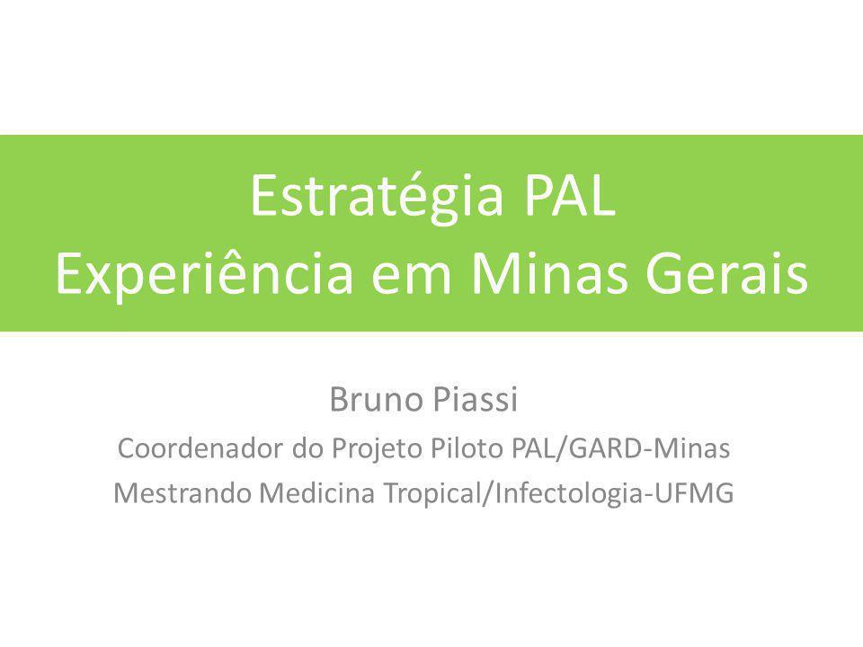 Estratégia PAL Experiência em Minas Gerais