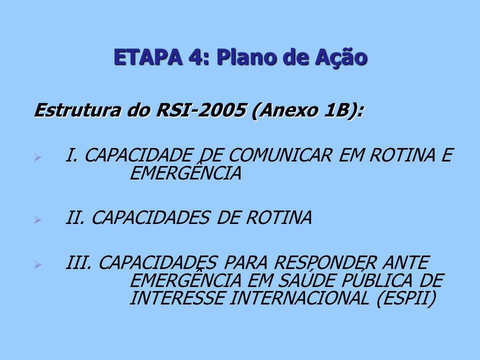 ETAPA 4: Plano de Ação Estrutura do RSI-2005 (Anexo 1B):