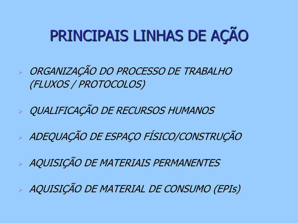 PRINCIPAIS LINHAS DE AÇÃO