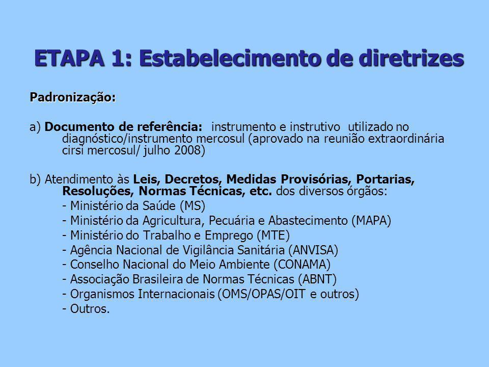 ETAPA 1: Estabelecimento de diretrizes
