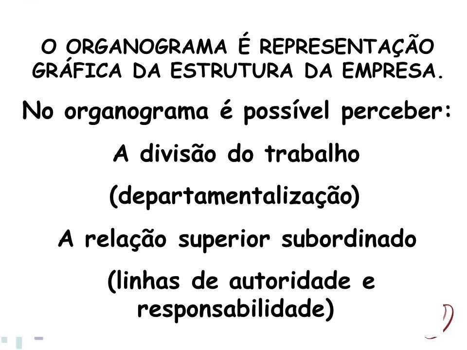 No organograma é possível perceber: