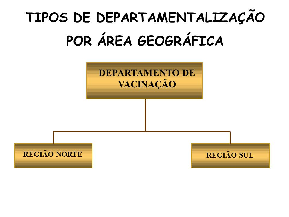 DEPARTAMENTO DE VACINAÇÃO